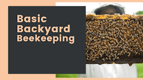 "Learn how to get healthy honey at home with ""Basic Backyard Beekeeping"" class"