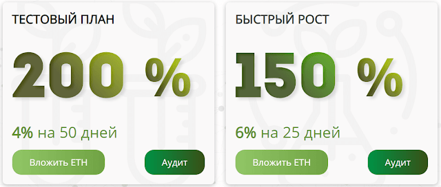 Инвестиционные планы в проекте Green Ethereus