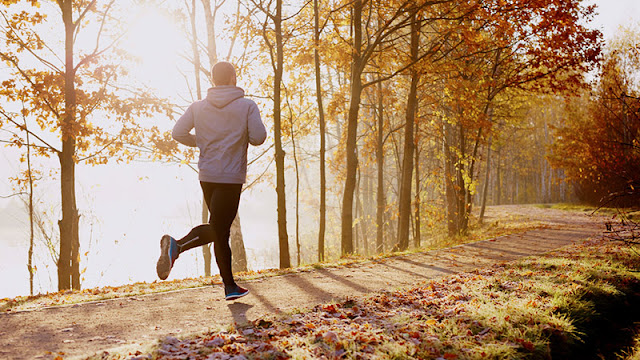 run-running-running_in_autumn-why_is_autumn_is_best_time_for_running-workout-training