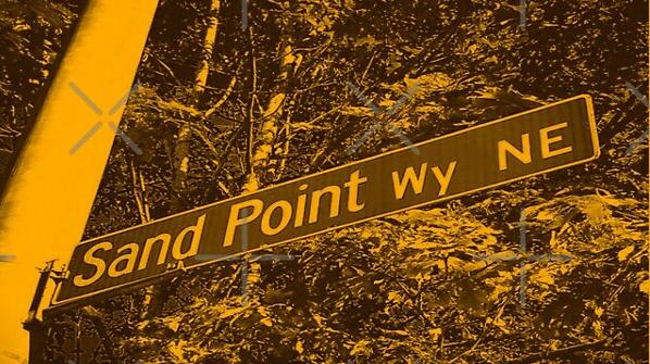 Sand Point Way, Seattle, Washington by Mistah Wilson