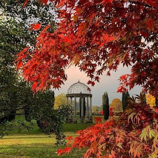 Thorp Perrow Arboretum, un paseo de otoño