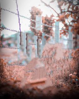 New Orange Tone Blur CB Background Free Stock Photo