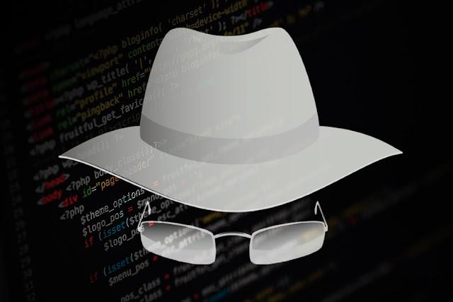 Greyhat Hacker কি?