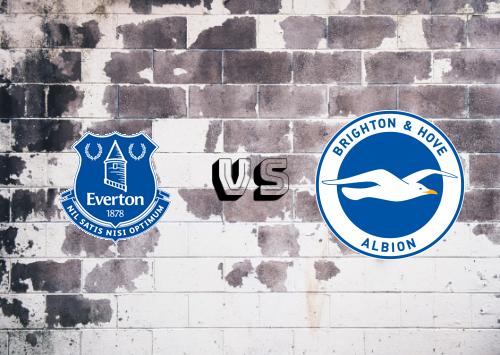 Everton vs Brighton y Hove Albion  Resumen