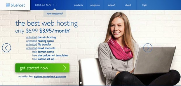 bluehost for business