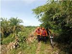 Korban Diseret Buaya di Pasbar, Akhirnya Ditemukan Telah Meninggal