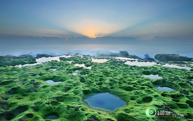 Tour nhiếp ảnh mùa rêu Phan Rang