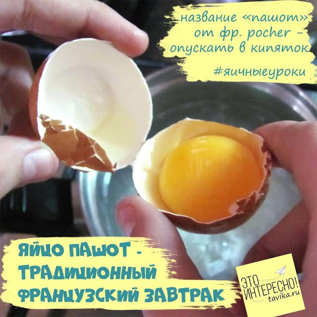 происхождение названия яйца пашот