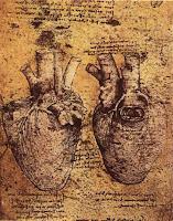 A drawing of the heart, by Leonardo da Vinci.