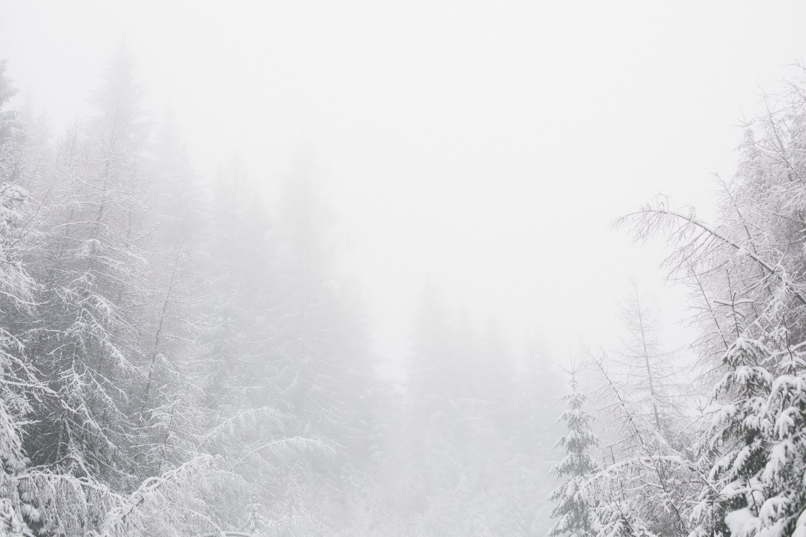 winter dryness skincare dry cold beauty tips