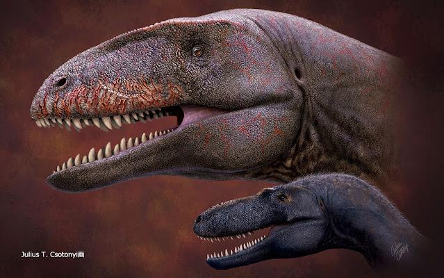 Who was king before Tyrannosaurus? Uzbek fossil reveals new top dino