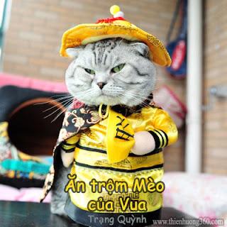 Truyện Trạng Quỳnh Ăn trộm mèo của Vua