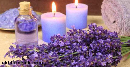 طب الأعشاب و فوائد عشبة الخزامى للرحم و للدورة الشهرية