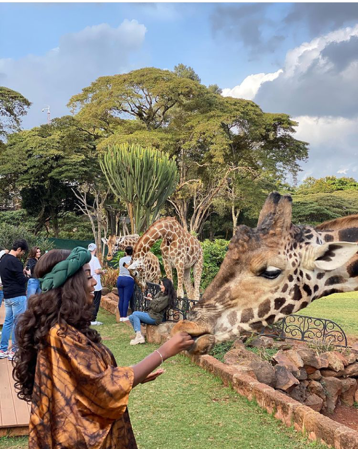Check Out Lovely Pictures of BBNaija Tolanibaj, Prince And Dorathy Spending Time With Giraffes