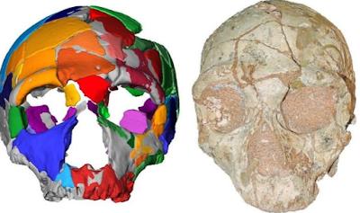 Διαφορά μεταξύ των απόλυτων και των σχετικών ραντεβού απολιθώματα