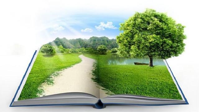 دور الاسلام في المحافظة على البيئة لغتي
