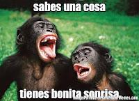 """<Imgsrc=""""foto-sonrisa-de-monos.jpg"""" width = """"600"""" height """"435"""" border = """"0"""" alt = """"Fotos monos sonriendo"""">"""