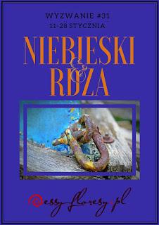 https://essy-floresy.blogspot.com/2018/01/wyzwanie-31-niebieski-i-rdza.html