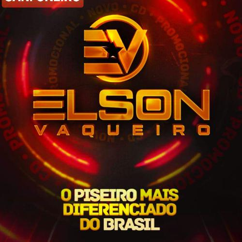 Elson Vaqueiro - Salgueiro - PE - Janeiro - 2020