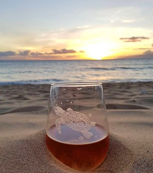 Sea Turtle Glass Etched Drinking Glasses