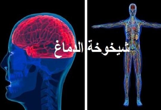 5 دراسات تبين كيف لنا بأن دماغنا وجسمنا بسرعات مختلفة بسبب شيخوخة الدماغ