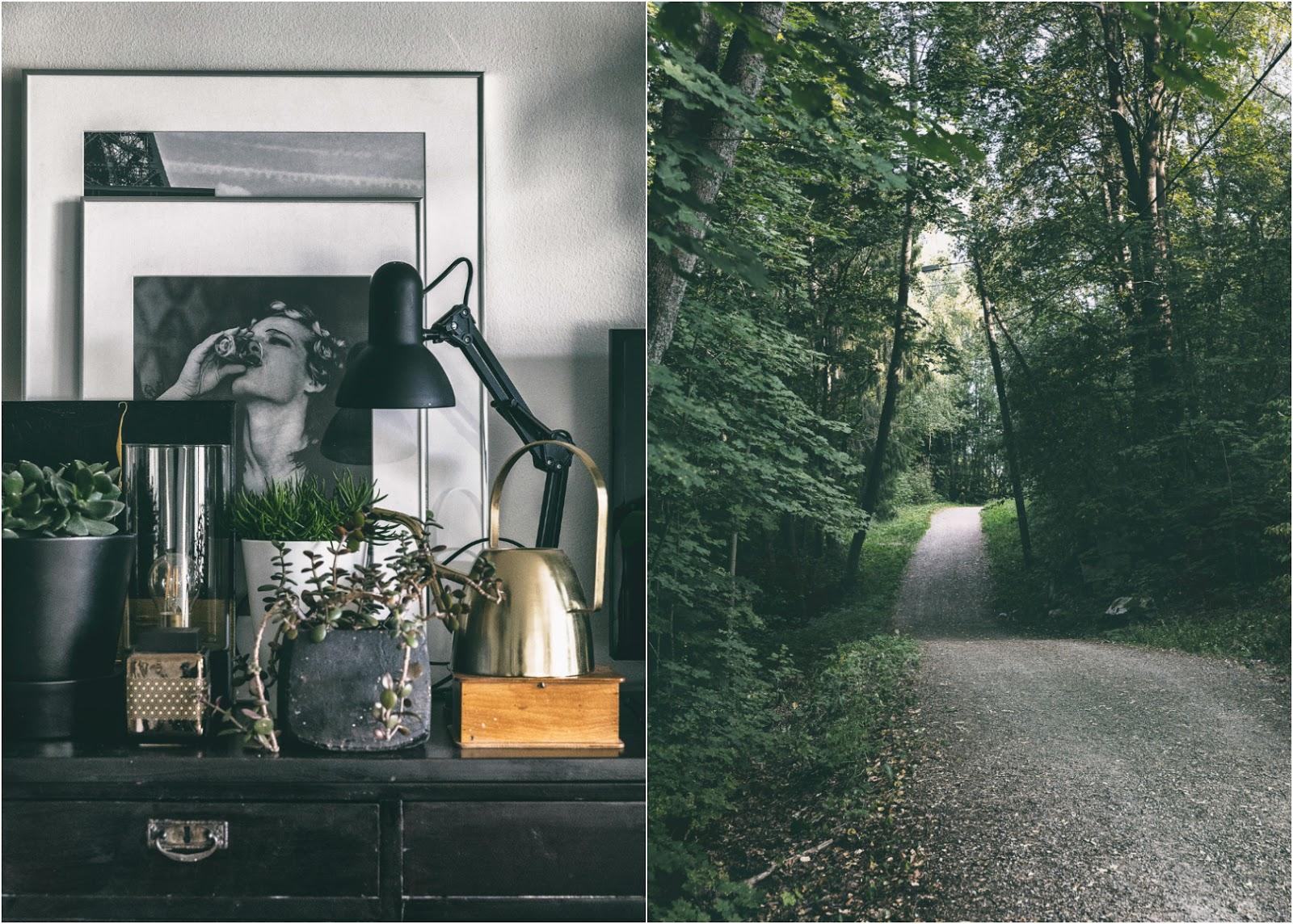 valokuvaaja, Frida Steiner, photographer, Visualaddict, visualaddictfrida, photographerlife, sisustus, sisustaminen, koti, luonto, polku, luontokuva