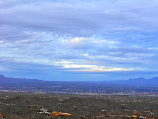 view of tucson from saguaro national park west side