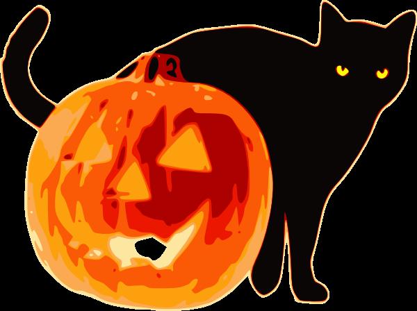 Gato negro y calabaza