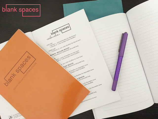 blank spaces notebook collection