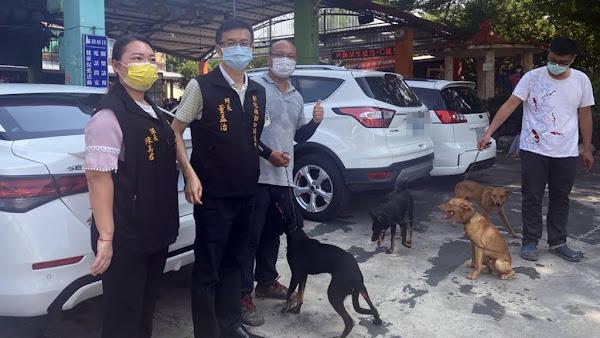 免費混種犬貓絕育三合一 彰化打造友善動物城市