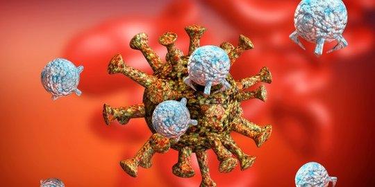 mana imun paling kuat pria atau wanita