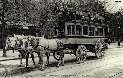 1881 et 1887 : des botanistes elbeuviens dans la vallée de l'Andelle - Omnibus Photo ND
