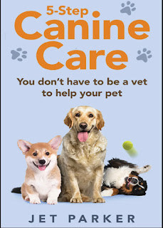 5-Step Canine Care, You Don't Have to be a Vet to Help Your Pet