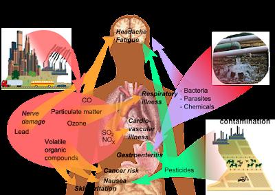 asma, Indeks Pencemaran Udara (IPU), jangkitan paru-paru, Jerebu, masalah pernafasan, pemanasan global, pembakaran kebun, pembakaran secara terbuka, sesak nafas, air pollution, kesan pencemaran udara terhadap kesihatan,