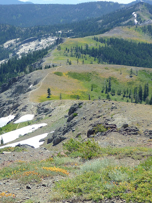 Pacific Crest Trail south of Mount Lincoln