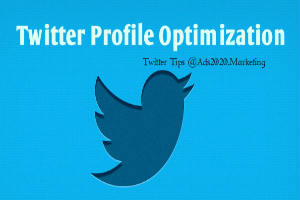 Make Twitter Profile Optimization for website traffic-300x200