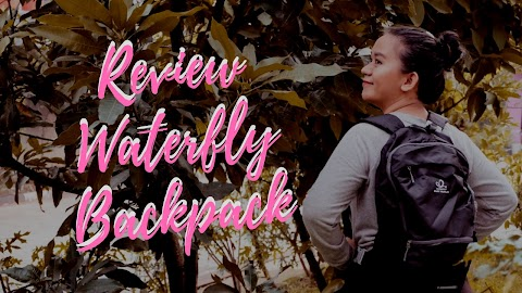 Review Waterfly 3 in 1 Multi Function Backpack