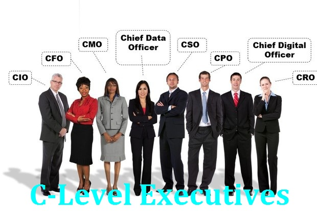 How many C-Level Executives Email Lists are there & Who is providing it?