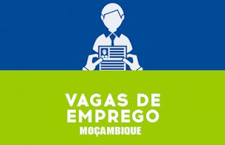Uma empresa pretende recrutar para o seu quadro de pessoal um (1) Designer Gráfico Júnior para Maputo.