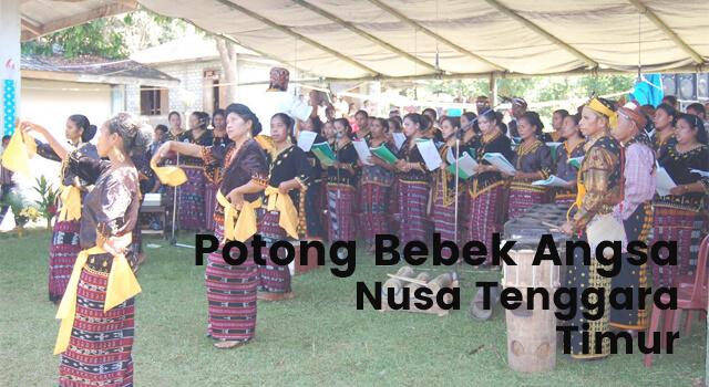 Lirik Lagu Potong Bebek Angsa - Nusa Tenggara Timur