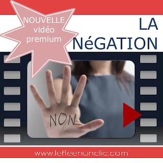 vidéo premium, la négation en français, apprendre à dire non, apprendre à dire non en français, FLE, grammaire, le FLE en un 'clic'