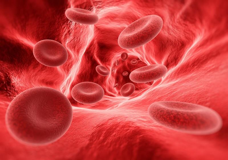Níveis de Hemoglobina: Alto, Baixo e Normal: O Guia Completo
