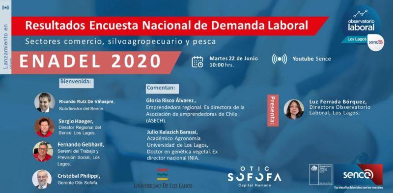 Encuesta Nacional de Demanda Laboral 2020