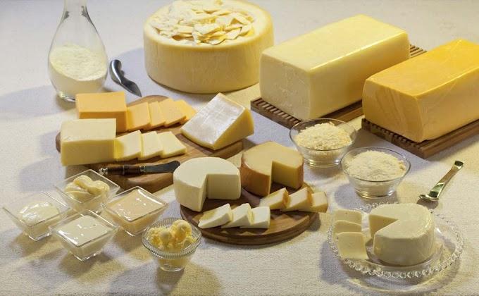 Brasil passará a exportar produtos lácteos para o Egito, anuncia ministra Tereza Cristina