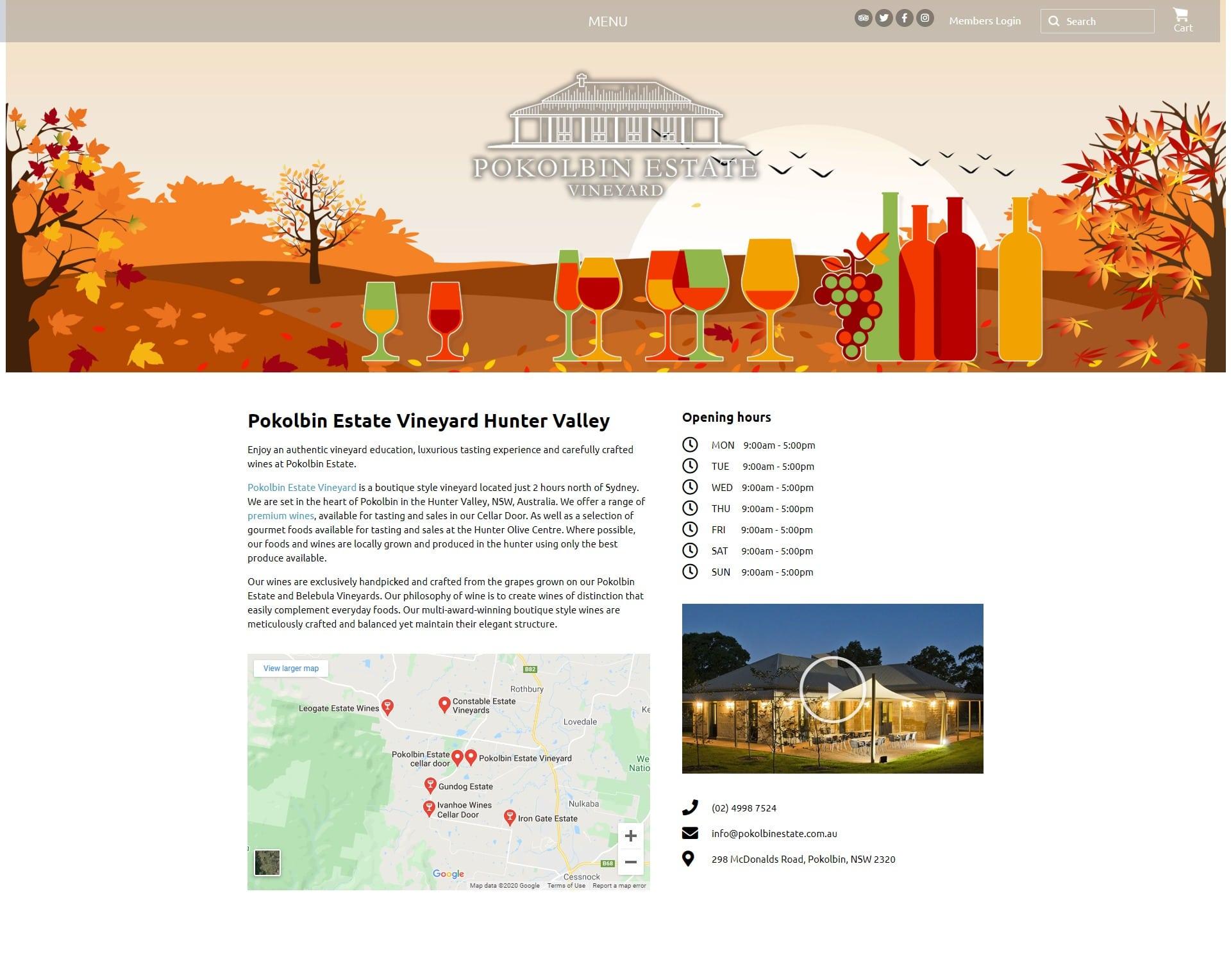 wordpress websites development in Newcastle