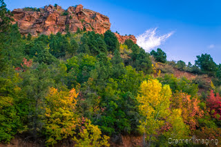 Cramer Imaging's fine art landscape photograph of fall or autumn colors on hillside in Kolob Canyon Zion National Park Utah with blue skies