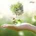 Kellogg se suma a la reducción del impacto ambiental