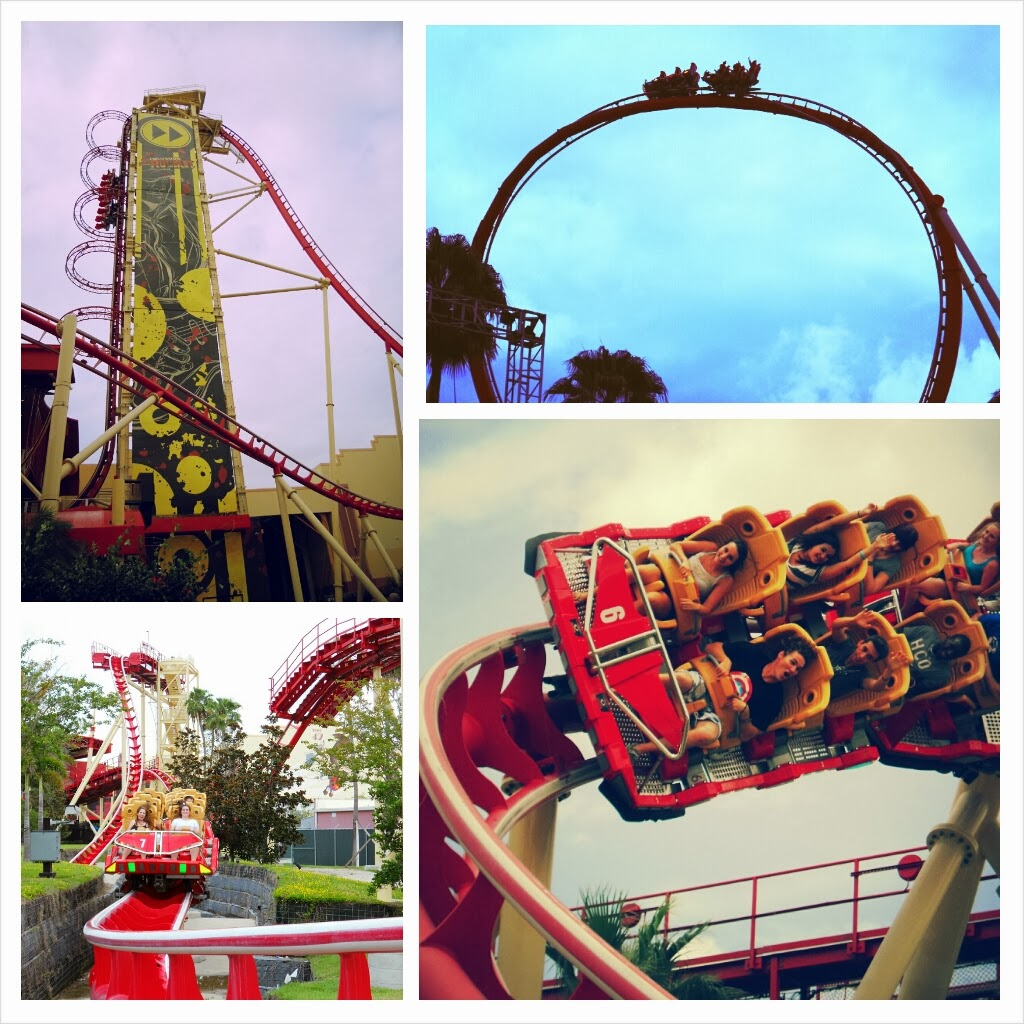 Amusement Authority: Top 50 Most Terrifying Roller Coasters
