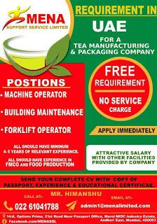 UAE job, Mena Support Services