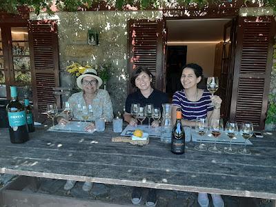 fazendo provas de vinhos na Quinta de Covela